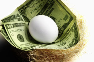 Egg in nest money picture