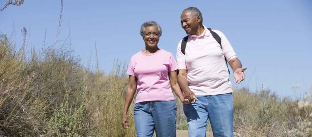 Alternative Retirement Plan