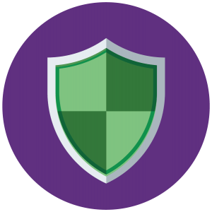 client security icon for rebel Financial