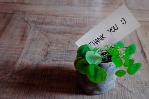 chinese money plant holding thank you :) card
